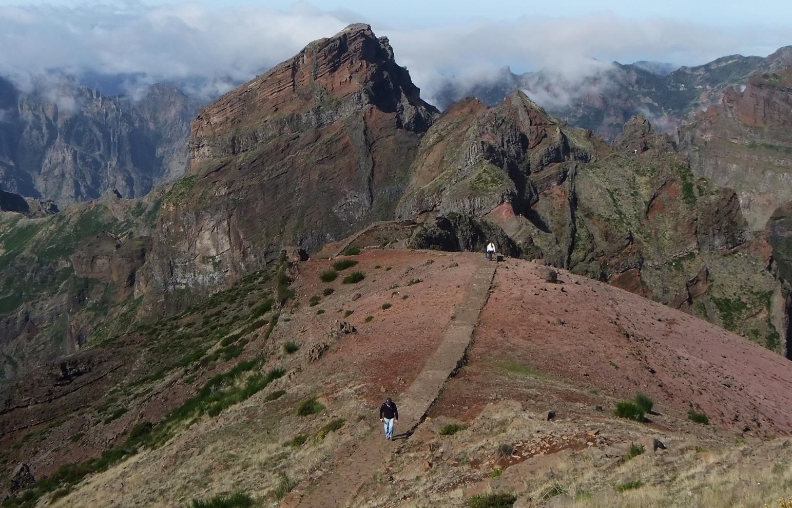 Wilde Bergwelt am Pico do Ariero