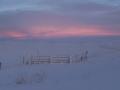 Sonnenaufgang gegen 11 Uhr